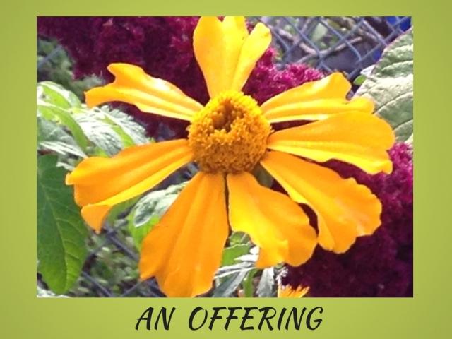 an-offering