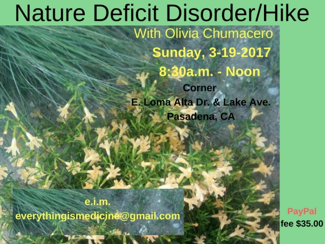 Nature Deficit Hike 2-9.jpg